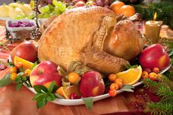 Festive Turkey 3620
