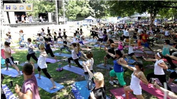 Yogapalooza image 1